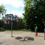 Jardins du Bas-Montreuil (14)