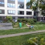 Jardins du Bas-Montreuil (20)