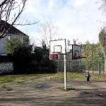 Jardins du Bas-Montreuil (24)