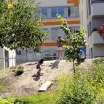 Jardins du Bas-Montreuil (9)